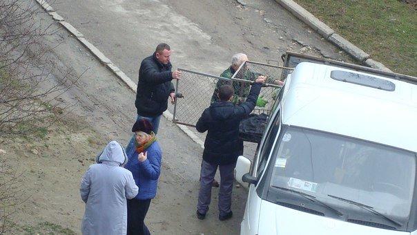 У Тернополі збили собаку і залишили помирати (Фото) (фото) - фото 2