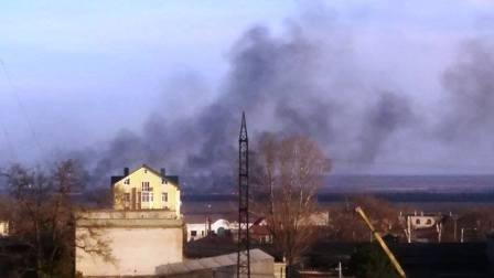 В Херсоне горят плавни (фото) - фото 2