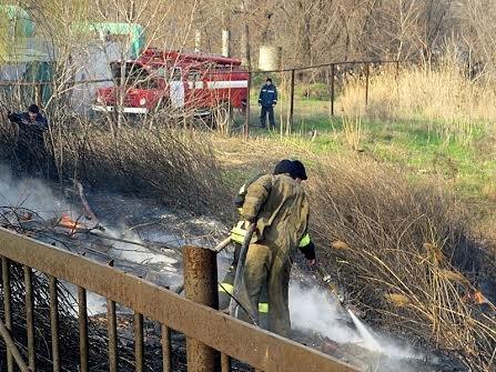 В Мариуполе огонь, спаливший камыши, чуть не подобрался к заправкам (Фотофакт), фото-13