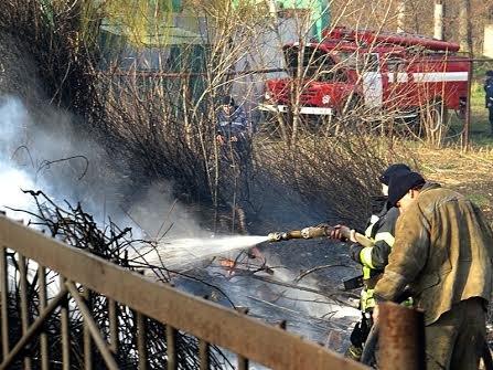 В Мариуполе огонь, спаливший камыши, чуть не подобрался к заправкам (Фотофакт), фото-14