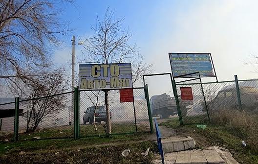 В Мариуполе огонь, спаливший камыши, чуть не подобрался к заправкам (Фотофакт), фото-2