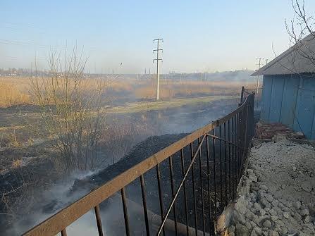 В Мариуполе огонь, спаливший камыши, чуть не подобрался к заправкам (Фотофакт), фото-11
