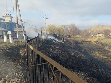В Мариуполе огонь, спаливший камыши, чуть не подобрался к заправкам (Фотофакт), фото-7