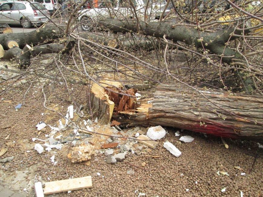 259c557d46493f1322e0dcb35c6d35f9 На Новом рынке в Одессе спиливают деревья и сносят ларьки