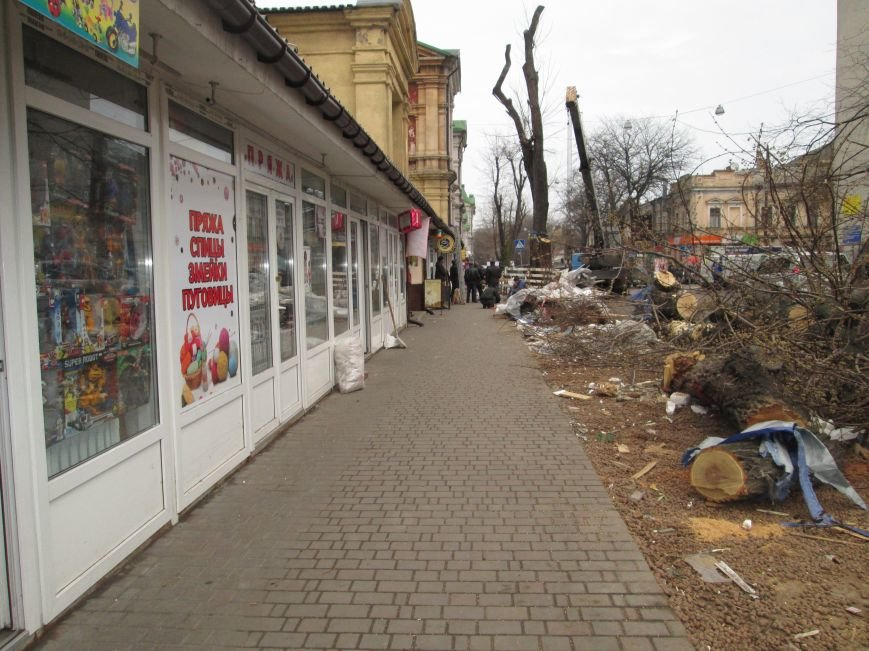 83de26dfdc59127269a5ac57ca3c97e6 На Новом рынке в Одессе спиливают деревья и сносят ларьки