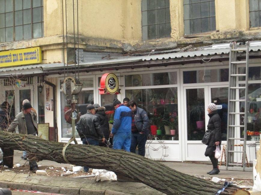 94b22fa5c0189bfbc06534d6a8e25276 На Новом рынке в Одессе спиливают деревья и сносят ларьки