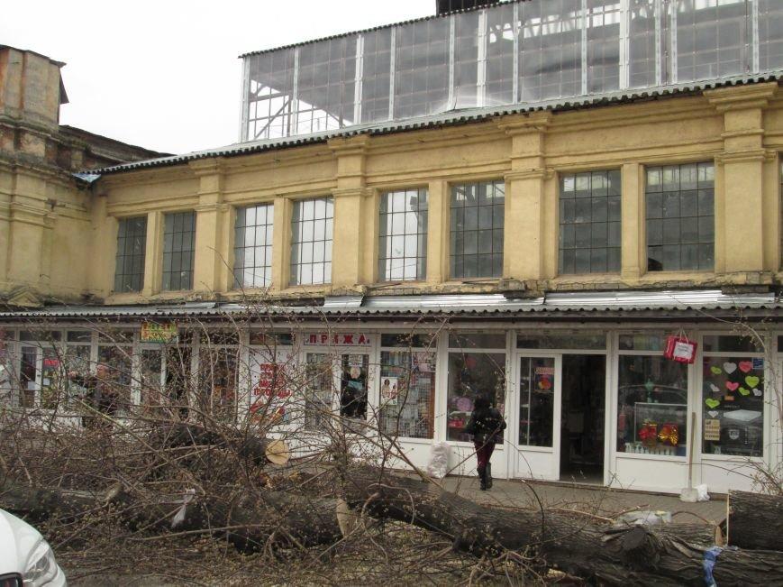 9585cf479432cff468bfcdf5a1bed675 На Новом рынке в Одессе спиливают деревья и сносят ларьки