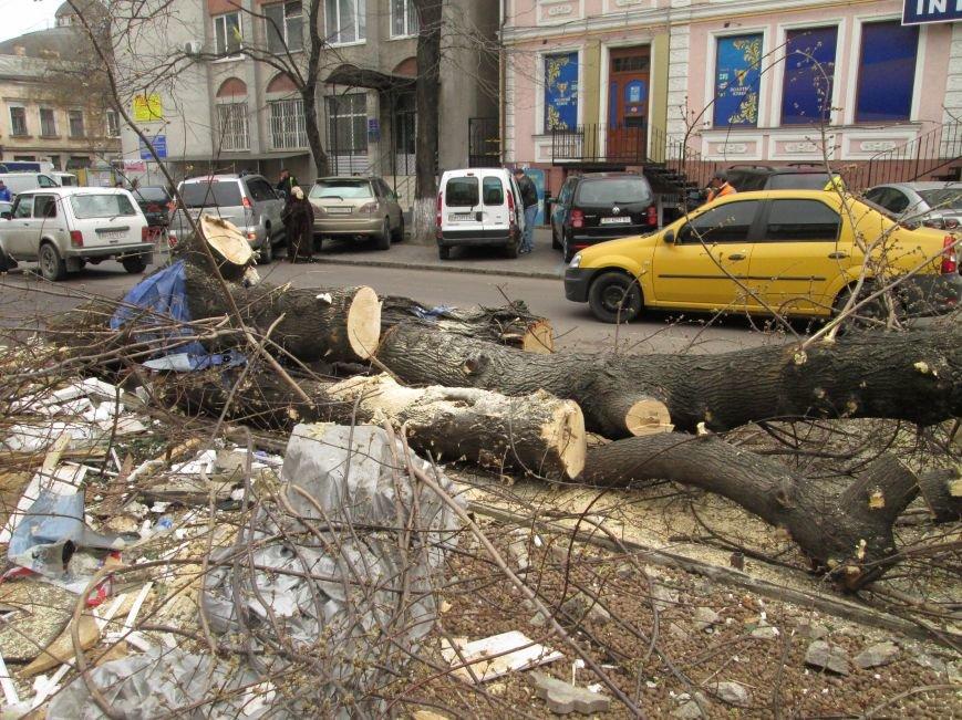 aaa7d9399a9ef319343b50d321ec3523 На Новом рынке в Одессе спиливают деревья и сносят ларьки