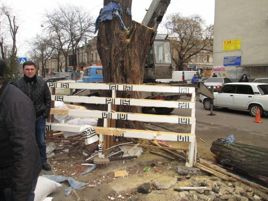 e8eff77bcb3b1215fec3d98bc4147fa7 На Новом рынке в Одессе спиливают деревья и сносят ларьки