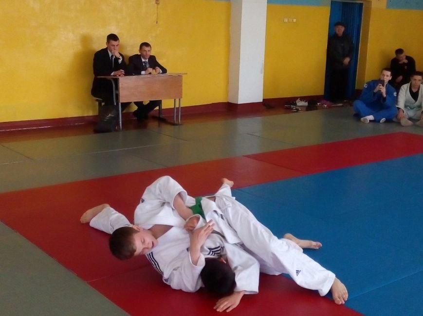 Добропольске дзюдоисты приняли участие в чемпионате Донецкой области (фото) - фото 1