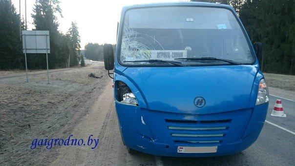 В Островецком районе рано утром рейсовый автобус насмерть сбил пешехода (Фото 18+) (фото) - фото 1