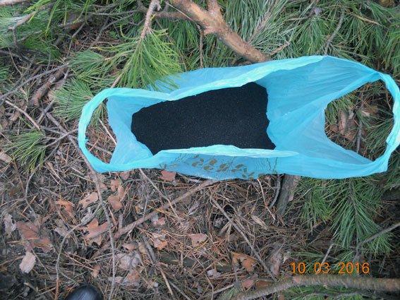 В лесополосе под Харьковом полиция задержала наркомана (ФОТО) (фото) - фото 1