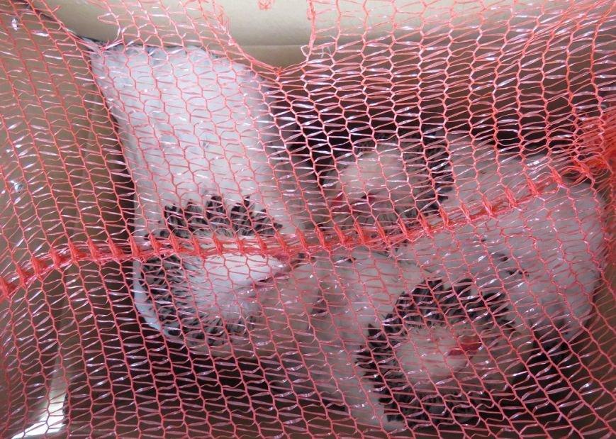 Украинцы пытаются тайком провезти в Крым мясо, колбасы и живых кур (ФОТО), фото-3