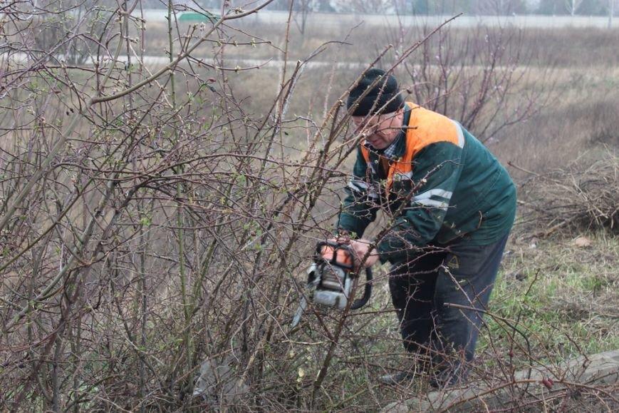 К празднику в Симферополе моют бордюры и парапеты, убирают в парках (ФОТО) (фото) - фото 7
