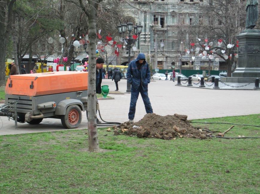 В Одессе на Соборной площади орудует спецтехника (ФОТО), фото-8