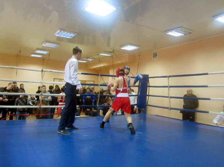 Юные боксеры большого Доброполья показали достойные результаты (фото) - фото 1