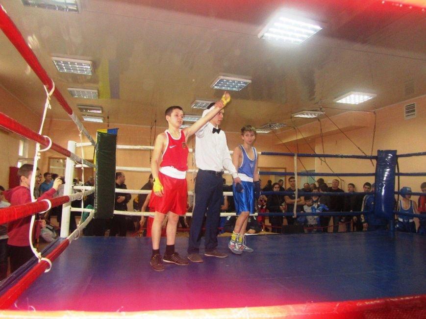 Юные боксеры большого Доброполья показали достойные результаты, фото-3