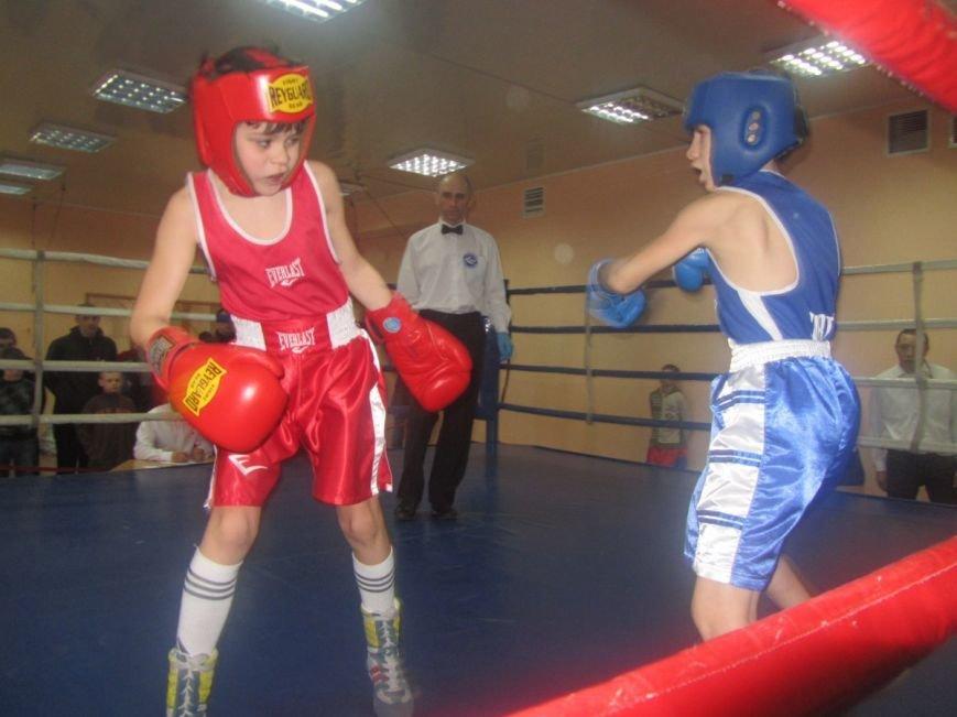 Юные боксеры большого Доброполья показали достойные результаты, фото-4