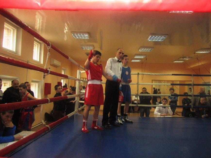 Юные боксеры большого Доброполья показали достойные результаты, фото-1