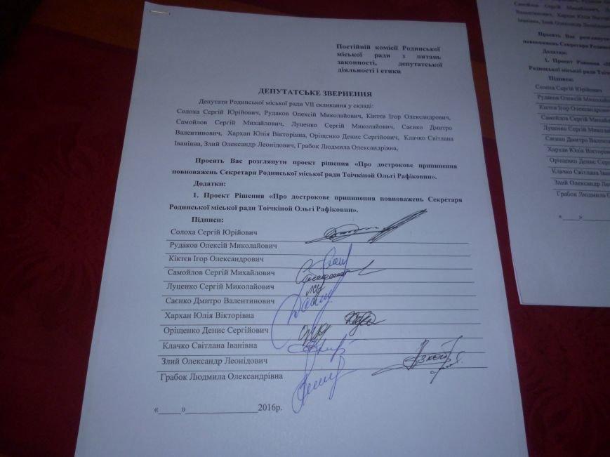 В Родинском, вопреки всему, избран новый исполняющий обязанности городского головы (фото) - фото 5
