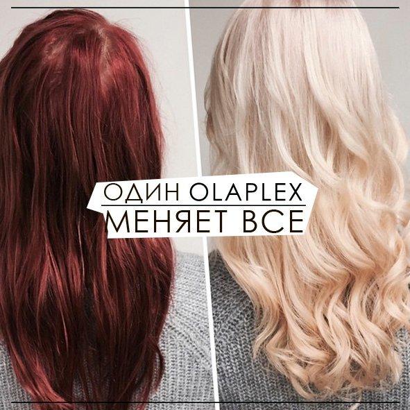 Olaplex завоевывает Крым, фото-2