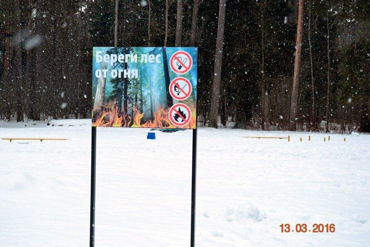 Прогулка по Комсомольской роще - памятнику природы областного значения в Твери (ФОТО) (фото) - фото 4