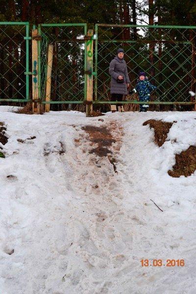 Прогулка по Комсомольской роще - памятнику природы областного значения в Твери (ФОТО) (фото) - фото 2
