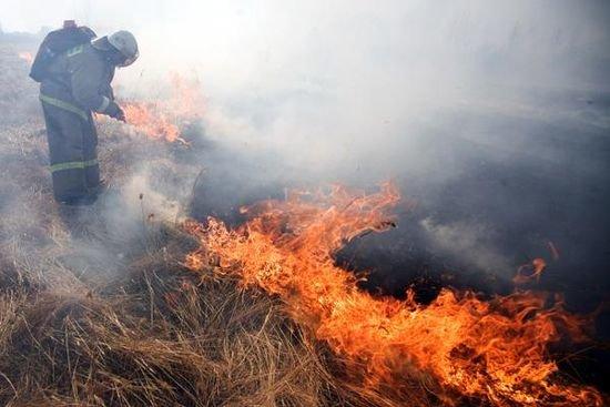 В Днепродзержинске массово сжигают сухую траву и листву (фото) - фото 1