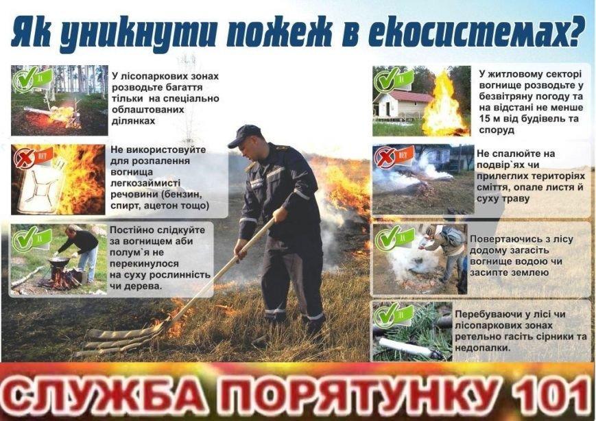 В Днепродзержинске массово сжигают сухую траву и листву (фото) - фото 3