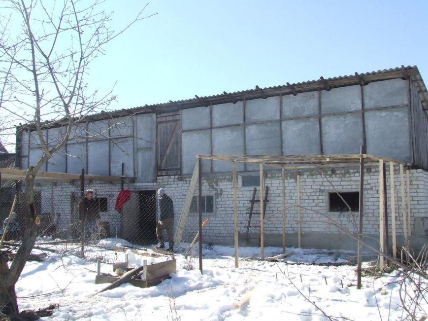 В Ульяновске больных птиц переселяют в новое место, фото-1