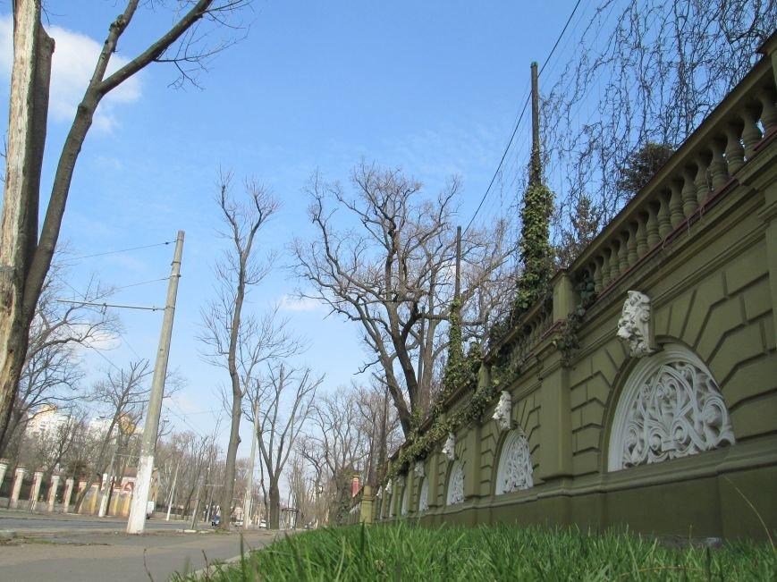 2aef215f58995a7ce74091ed81cb0ceb Успейте запомнить: Стараниями одесской власти город может навсегда потерять Французский бульвар