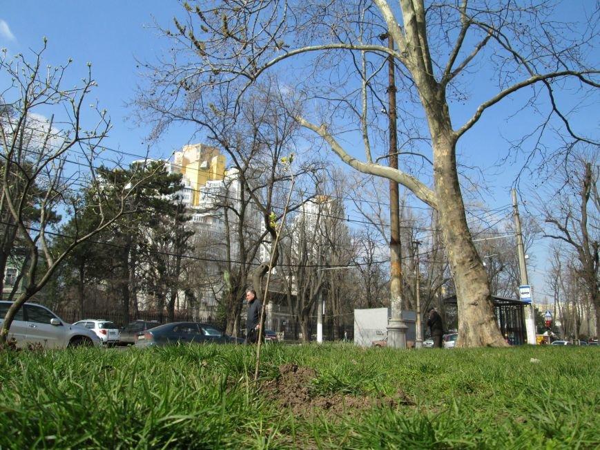407f4ee102004faed22b2515f7cb697d Успейте запомнить: Стараниями одесской власти город может навсегда потерять Французский бульвар