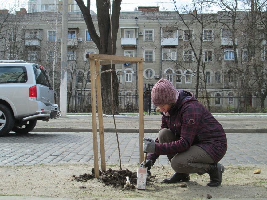 33423e8ed7eee106157591048d48a3a4 Протест с лопатами. Одесситы против расширения Французского бульвара