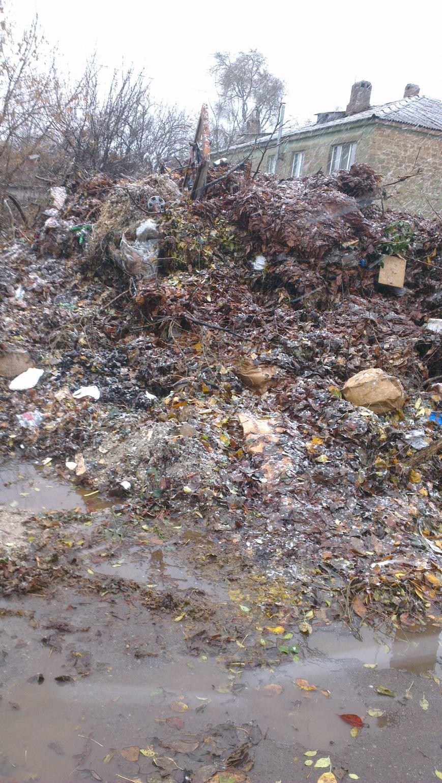 Если мусорник не уберут, дети будут скоро на крысах кататься, - криворожане обеспокоены несанкционированной свалкой возле детского сада (ФОТО) (фото) - фото 1