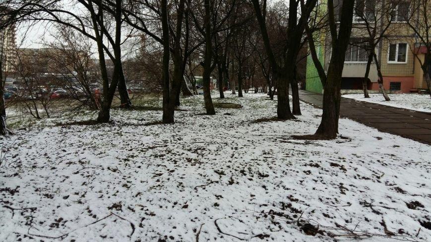 А за вікном, майже весна: у Львові знову випав сніг (ФОТО) (фото) - фото 1