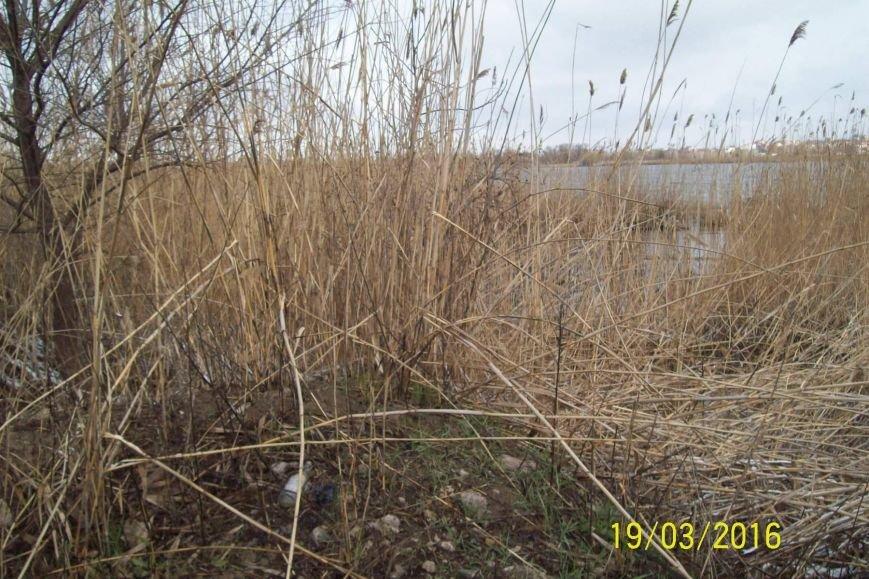 Активисты Кривого Рога разработают проект оздоровления реки Саксагань (ФОТО), фото-6