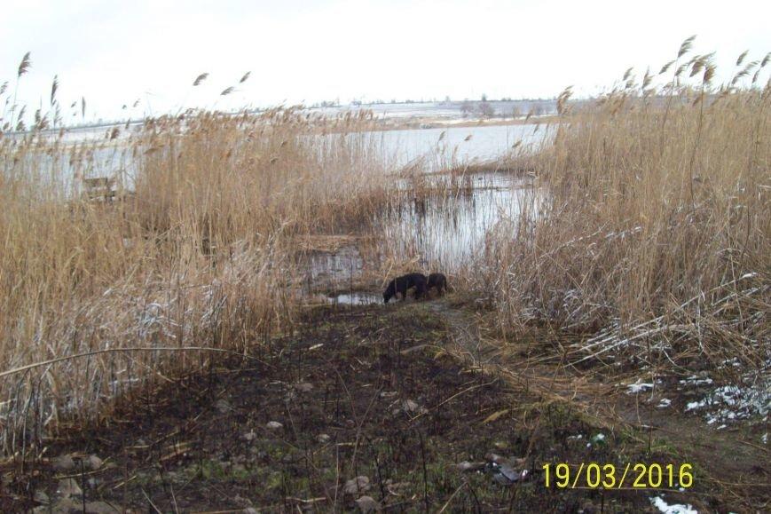 Активисты Кривого Рога разработают проект оздоровления реки Саксагань (ФОТО), фото-1