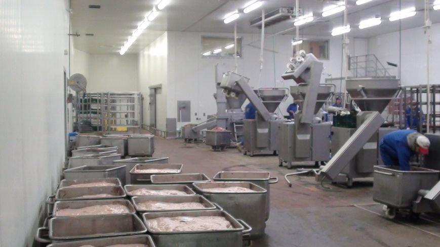 Один из харьковских мясокомбинатов незаконно изготовлял...пирожные и уклонялся от налогов (фото) - фото 1