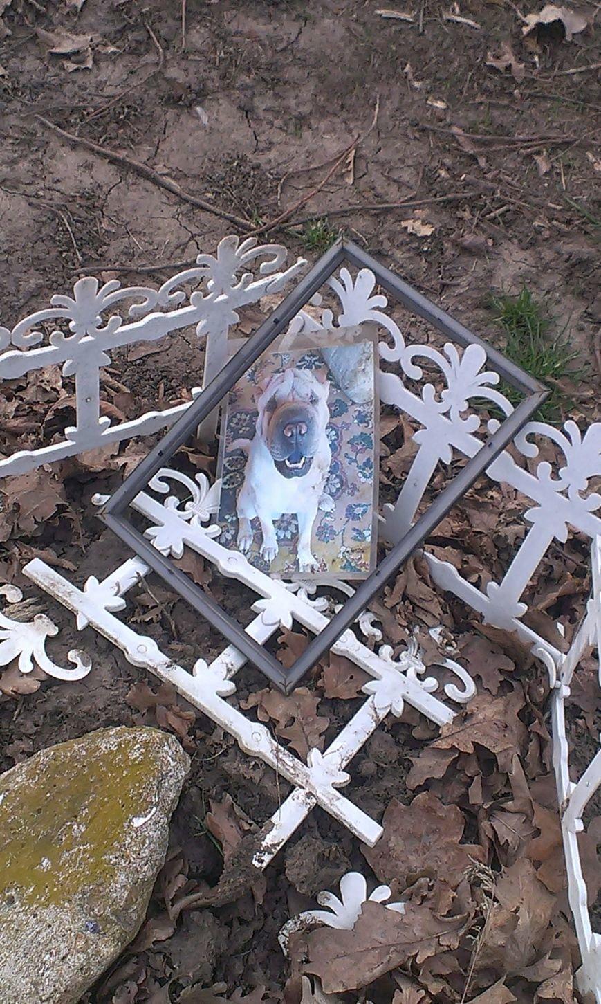 На Мемориале героической обороны Одессы собачники устроили кладбище домашних животных (ФОТО) (фото) - фото 1