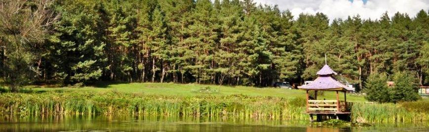 Полтавщина явяткує Міжнародний день лісу (фото) - фото 2
