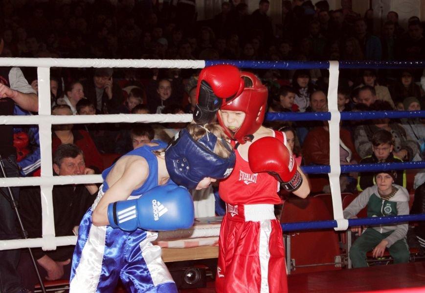 В Симеизе прошел I Открытый турнир по боксу, фото-2