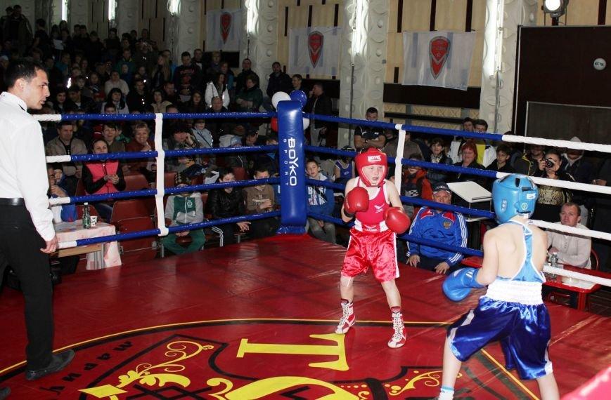 В Симеизе прошел I Открытый турнир по боксу, фото-1