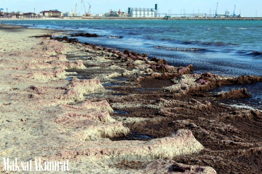 Войлочный пляж в Актау, фото-8