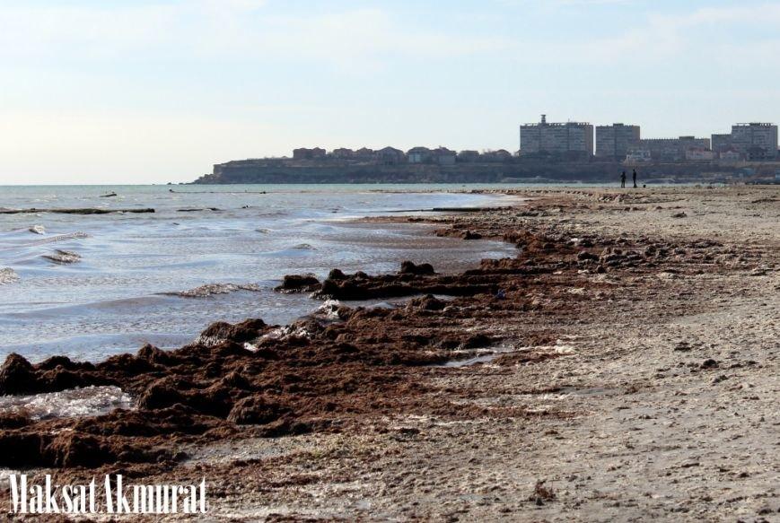 Войлочный пляж в Актау, фото-1