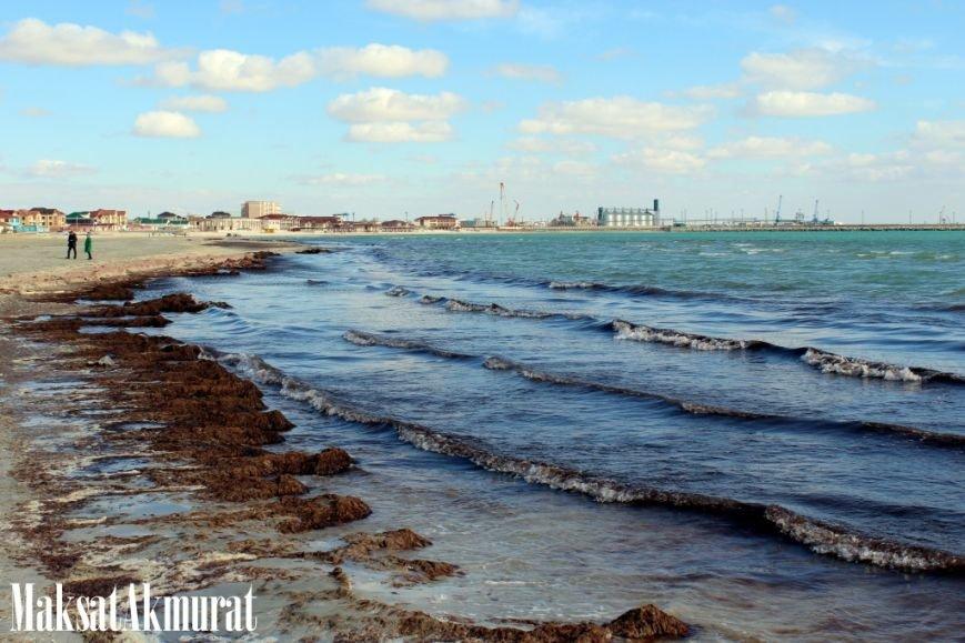 Войлочный пляж в Актау, фото-5