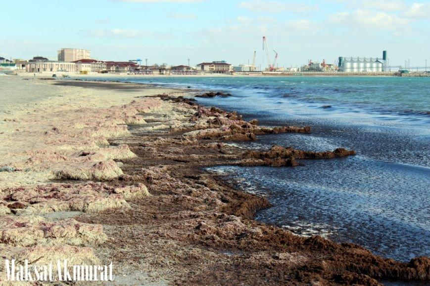 Войлочный пляж в Актау, фото-7