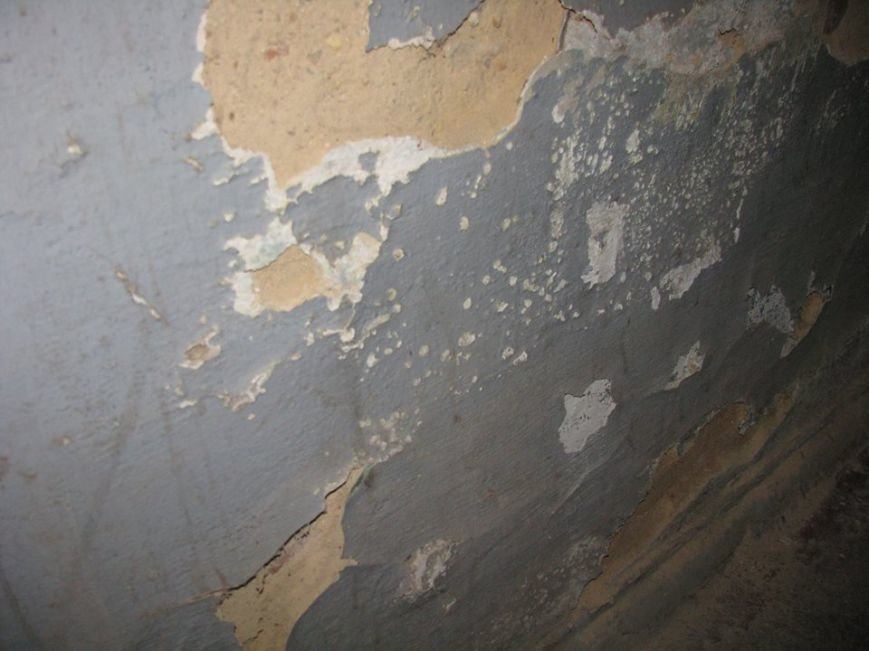 Криворожане продолжают ждать ремонта в подъезде, обещанного год назад частным ЖЭКом (ФОТО), фото-1