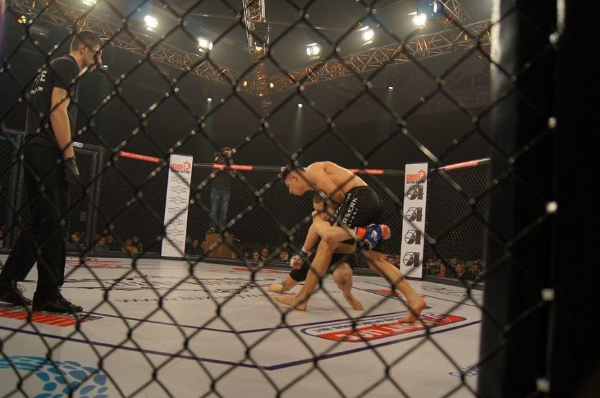 Ужгородський боєць Аллен Гаїбов: «Коли я у клітці, то мозок відключається, все працює на інстинктах» (фото) - фото 6