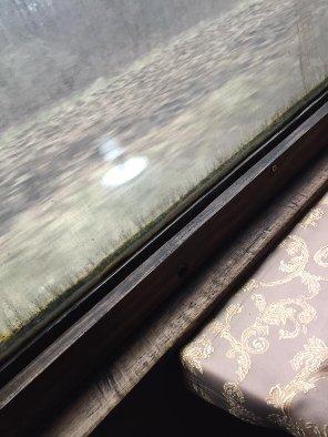 У потязі, який курсує через Тернопіль, виросла трава (фото) (фото) - фото 1