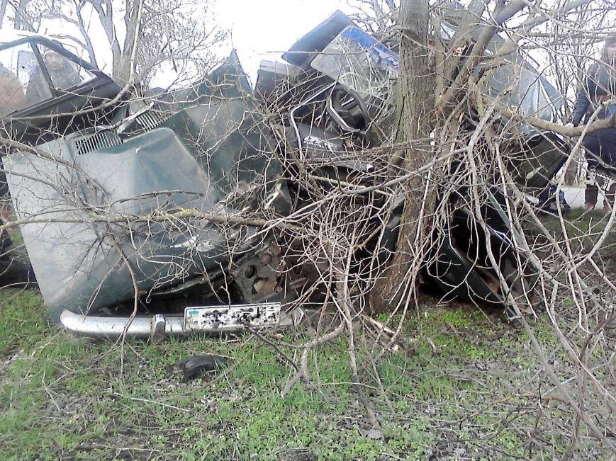 В Запорожской области от удара в дерево авто разорвало на куски, - ФОТО (фото) - фото 1